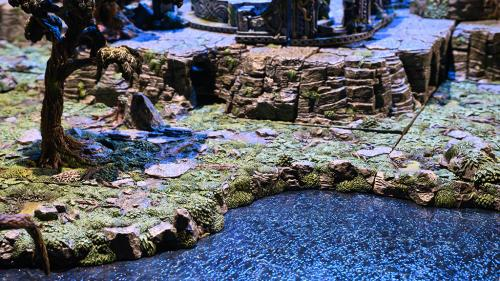 Forest ledges divide the forest from the water.