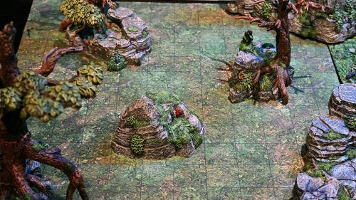 Rocks and trees on the expansive forest floor battleboard