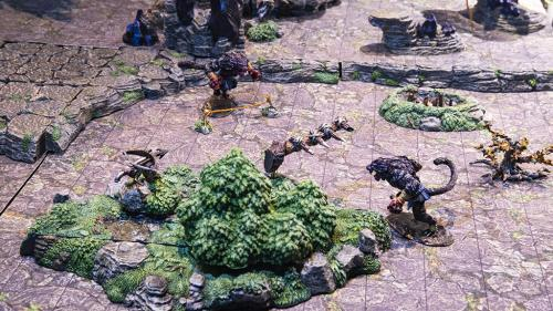 Aerial view of Wyluli weretigers are about to become victims of traps on the isle of the swamp.